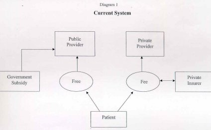 Fees will follow the patient
