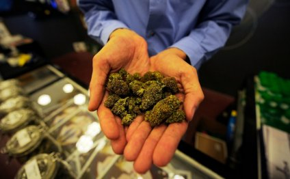 Medical Marijuana Cases Cannot