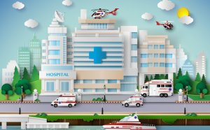 Largest Healthcare Systems