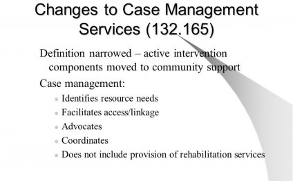 Case Management Services definition